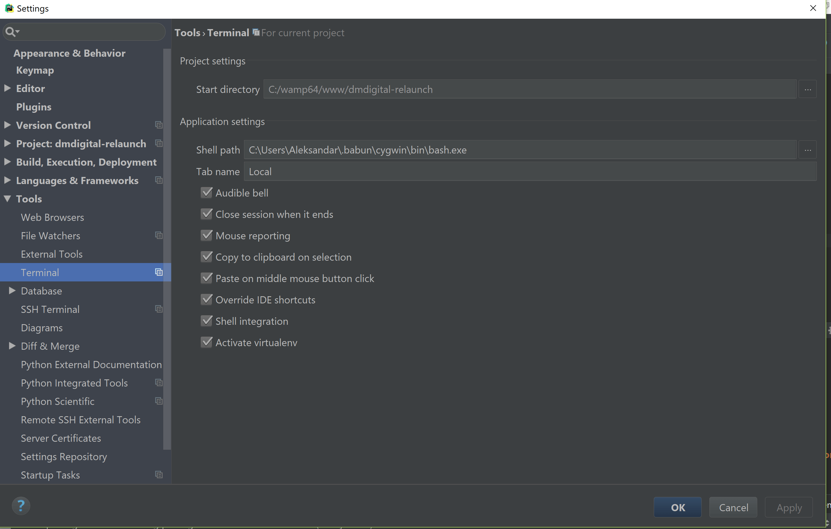 jetbrains IDE Babun settings bash